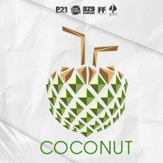 COCONUT - A festa tropical de todas as festas