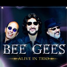 Bee Gees Experience Live in Trio em São Bernardo do Campo/SP